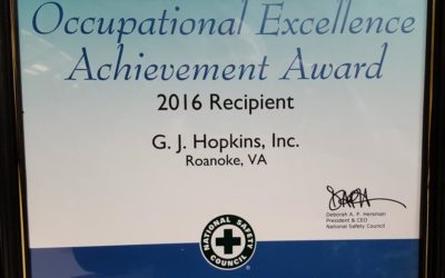 Occupational Excellence Achievement Award