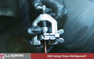 Are You Still Using Freon Refrigerant?